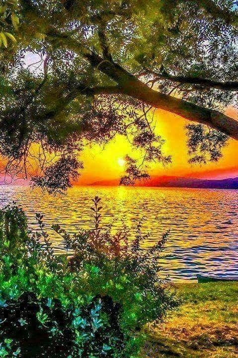 Belles images trouvées sur Pinterest  16b8d810
