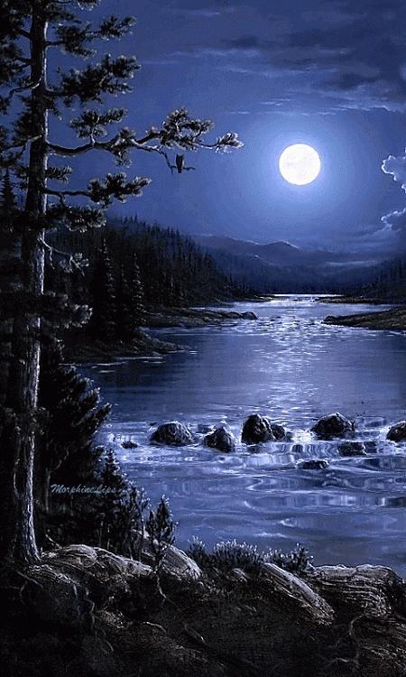 Belles images trouvées sur Pinterest  - Page 2 28330210
