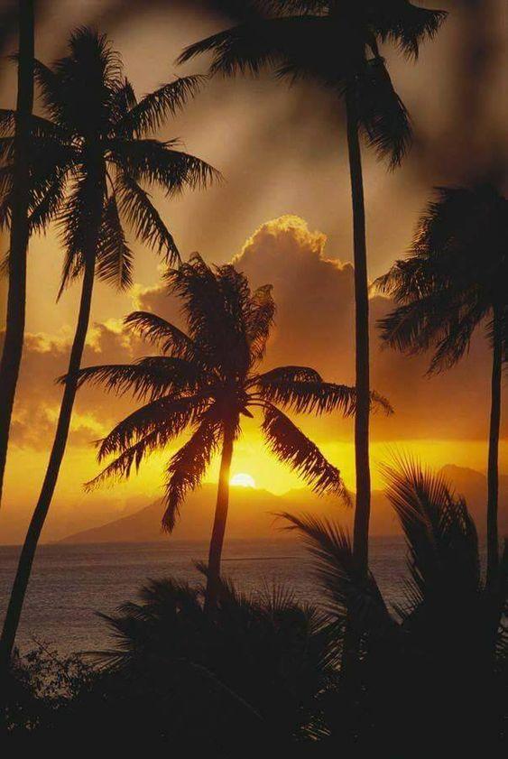 Belles images trouvées sur Pinterest  35bcc410
