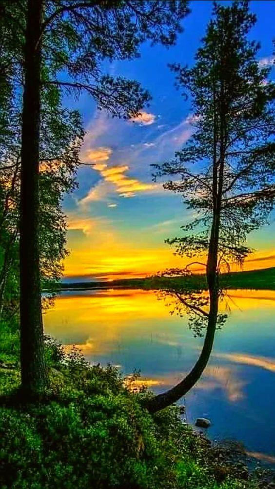 Belles images trouvées sur Pinterest  480dec10