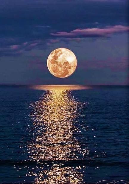Belles images trouvées sur Pinterest  - Page 2 7736b410