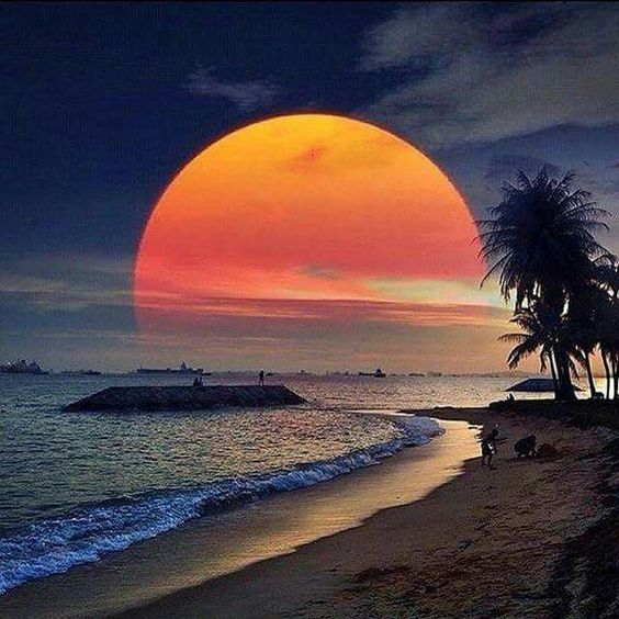 Belles images trouvées sur Pinterest  - Page 3 78fd5411