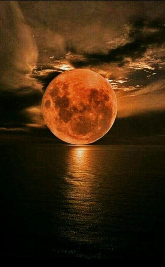 Belles images trouvées sur Pinterest  87dbcb10