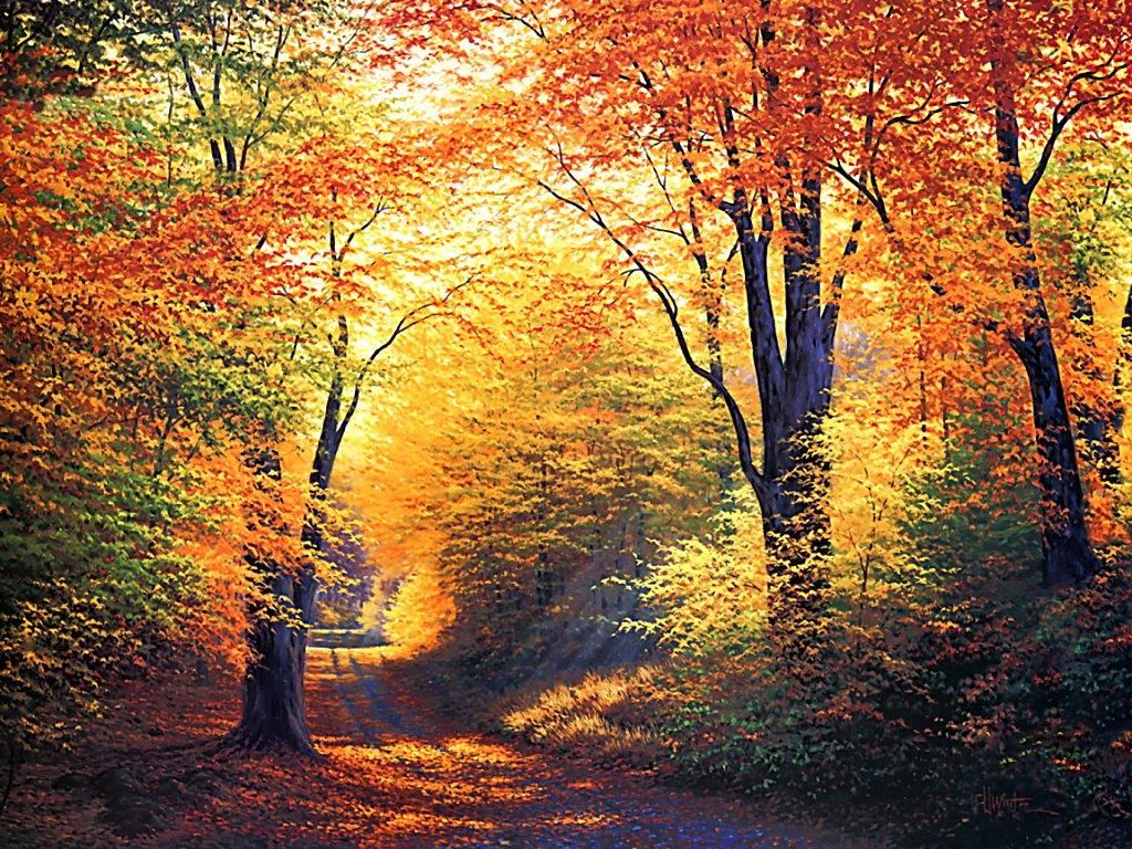 Belles images d'automne  Acba2810