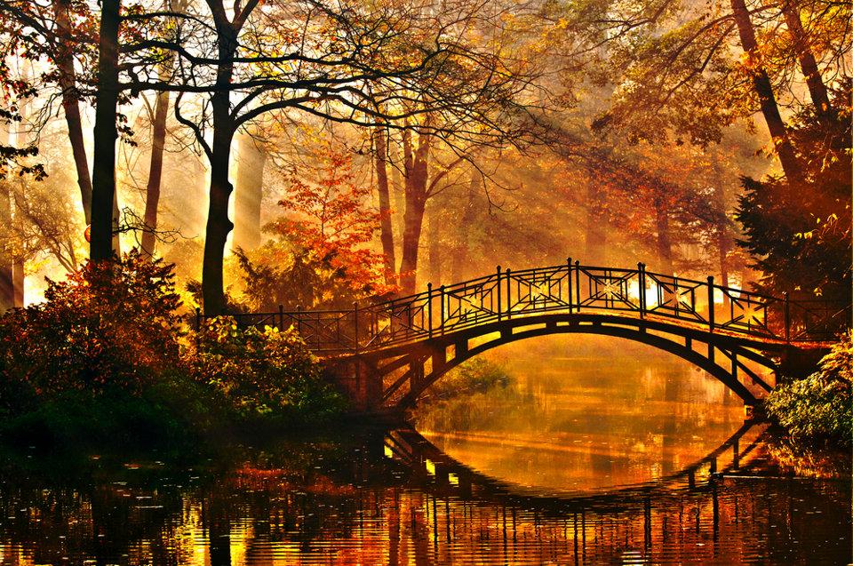 Belles images d'automne  D0a2f810