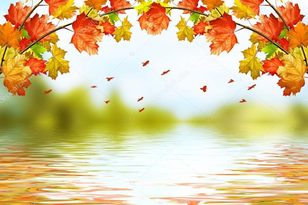 Belles images d'automne  Deposi10