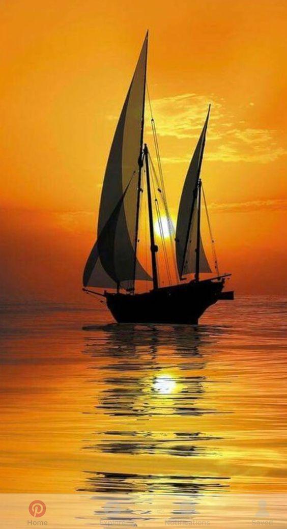 Belles images trouvées sur Pinterest  - Page 2 E4189010