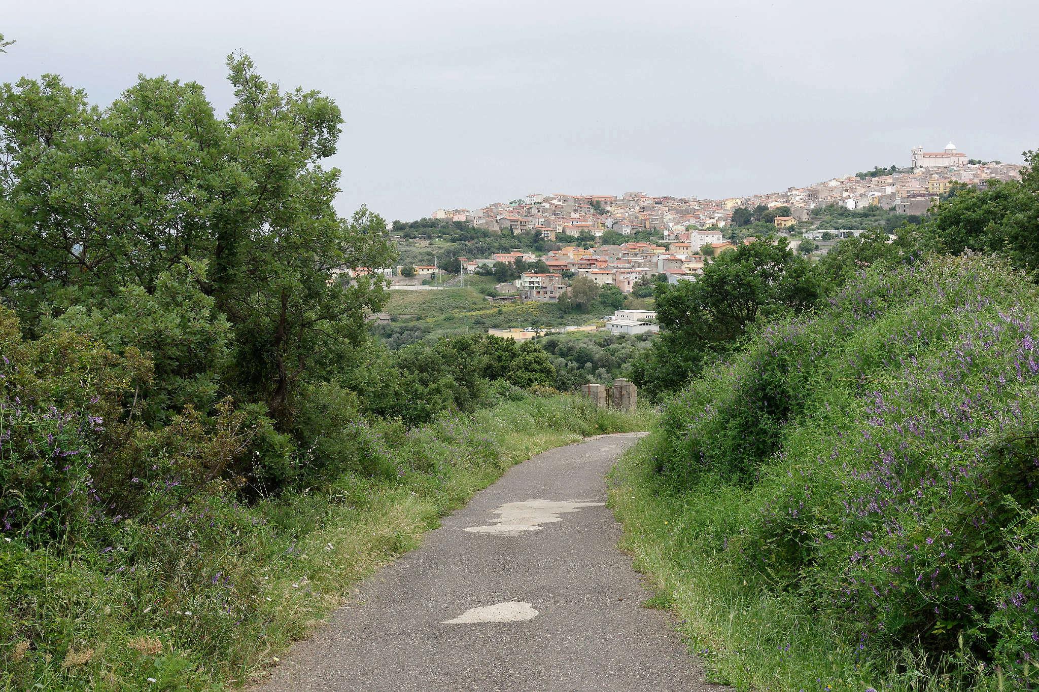 CR d'un petit tour de la Sardaigne (printemps 2018) - Page 3 Dsc02629
