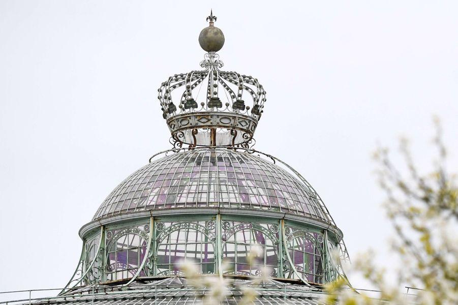Belgique :  les Serres royales de Laeken 1025