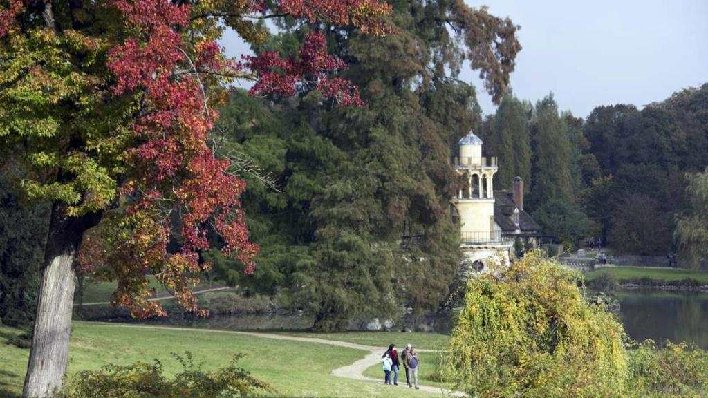 Les arbres admirables du domaine de Versailles 1522