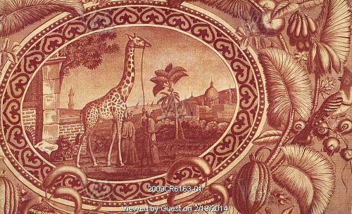 ZARAFA - La girafe de Charles X, dite Zarafa 6ad0da10