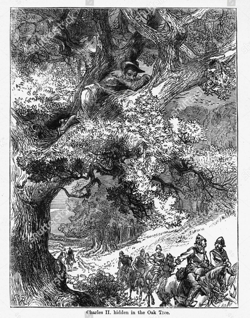The Royal Oak, de Charles II d'Angleterre Art-va10