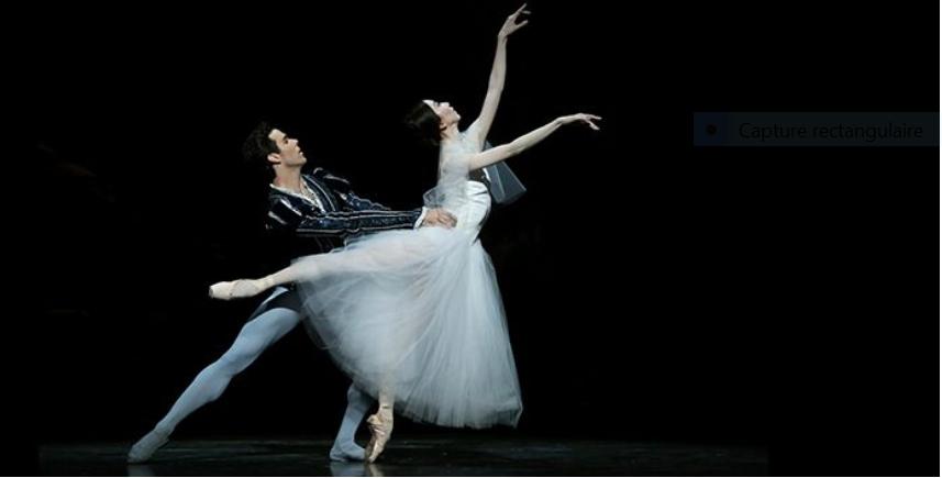 The Houston Ballet,   Marie-Antoinette Captu437