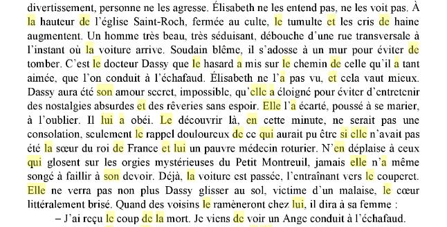 Une idylle amoureuse entre le docteur Dassy et Madame Elisabeth ?  Captu537