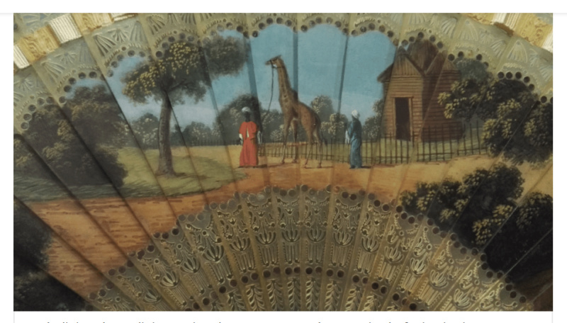 La girafe de Charles X, dite Zarafa Captur42
