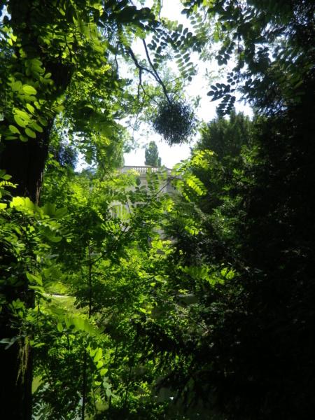 Les jardins du Petit Trianon - Page 4 Imgp0055