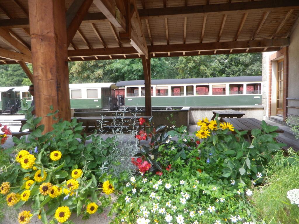 """Le """" Mastrou """" , petit train historique de l'Ardèche Imgp0417"""