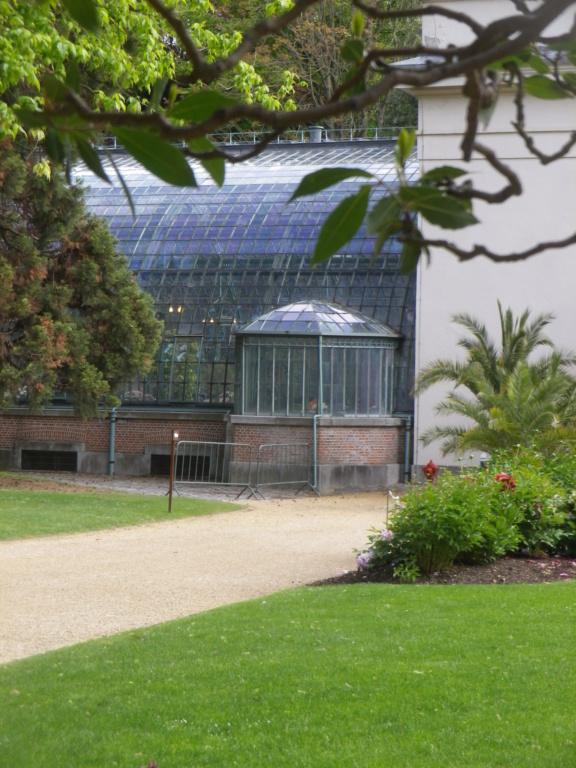 Belgique :  les Serres royales de Laeken Imgp0828