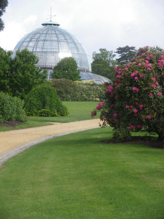 Belgique :  les Serres royales de Laeken Imgp0842