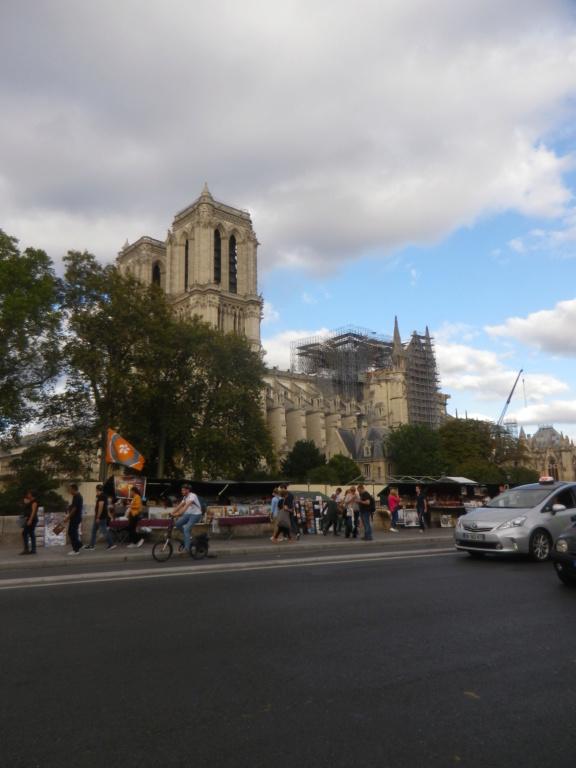 La restauration de la cathédrale Notre-Dame de Paris - Page 3 Imgp1322