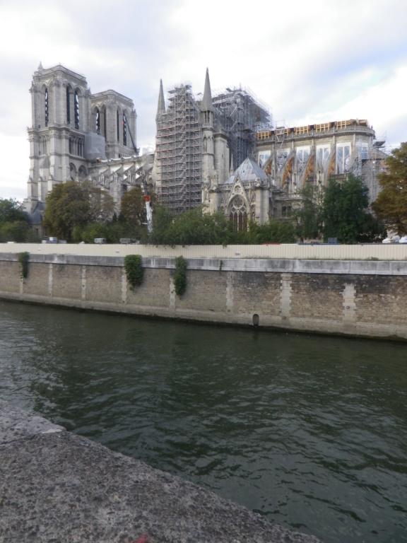 La restauration de la cathédrale Notre-Dame de Paris - Page 3 Imgp1323