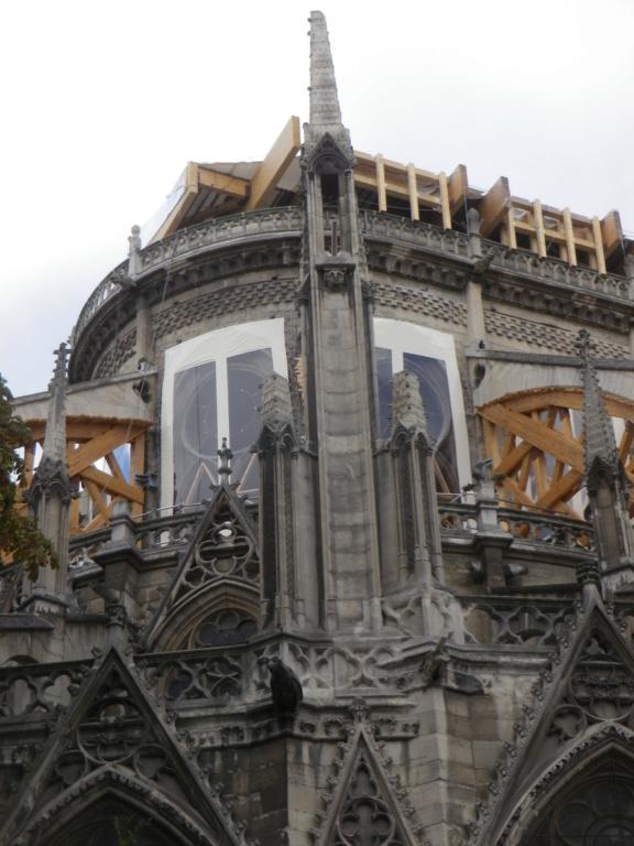 La restauration de la cathédrale Notre-Dame de Paris - Page 3 Imgp1327