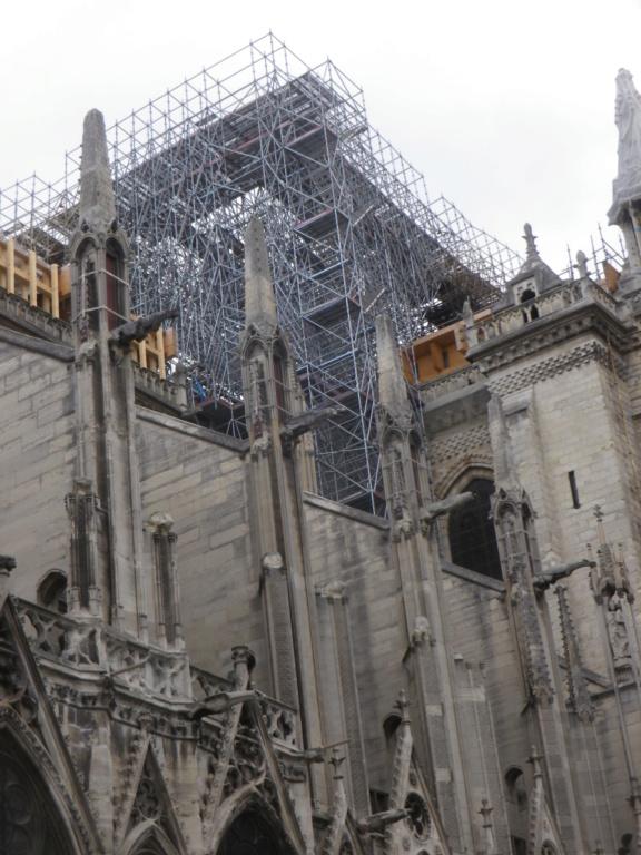 La restauration de la cathédrale Notre-Dame de Paris - Page 3 Imgp1328