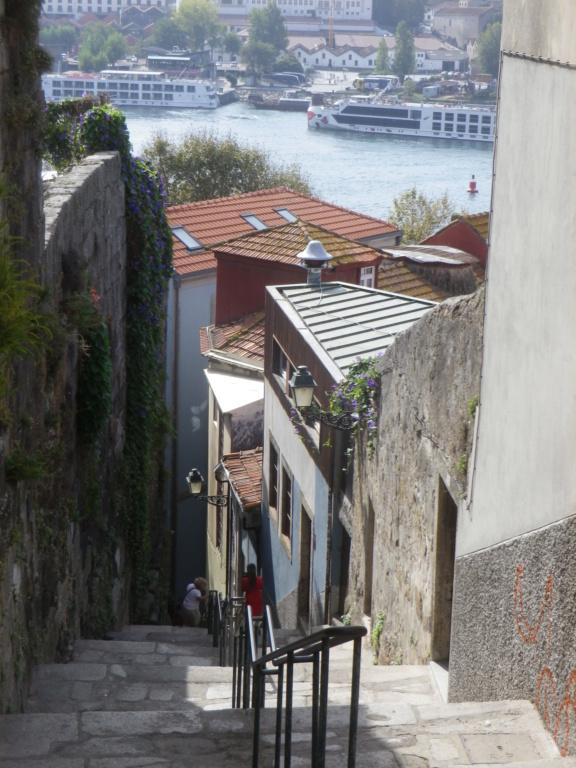 Bons baisers du Portugal !  Imgp1423