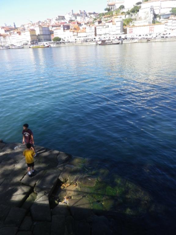 Bons baisers du Portugal !  Imgp1549