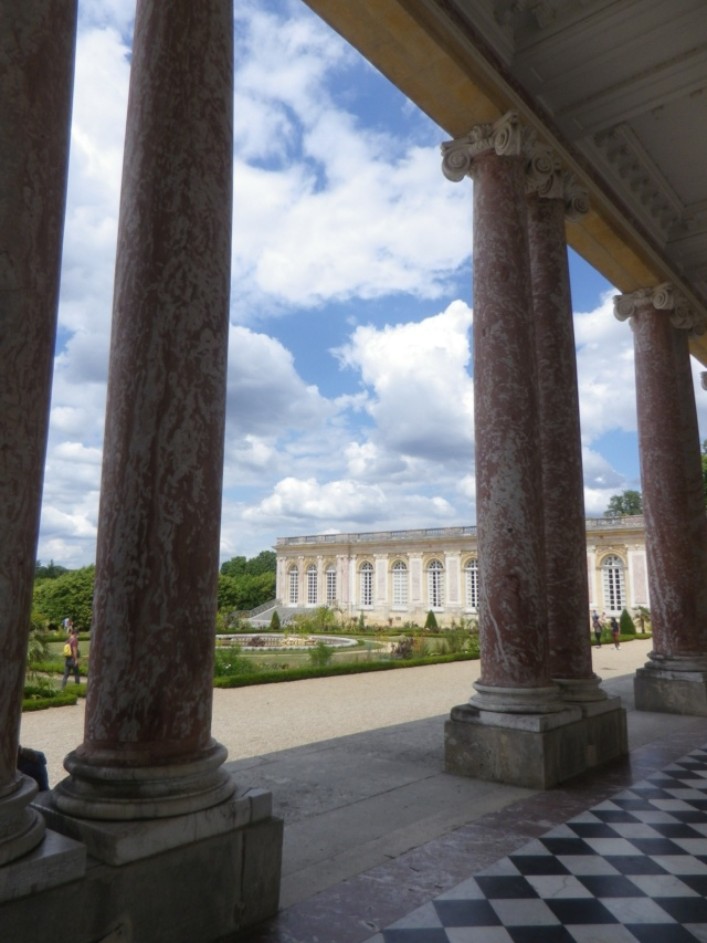 Le Parterre Africain du Grand Trianon Imgp1888