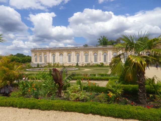 Le Parterre Africain du Grand Trianon Imgp1893