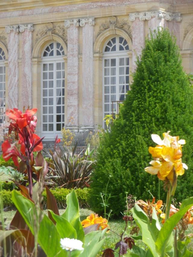 Le Parterre Africain du Grand Trianon Imgp1914