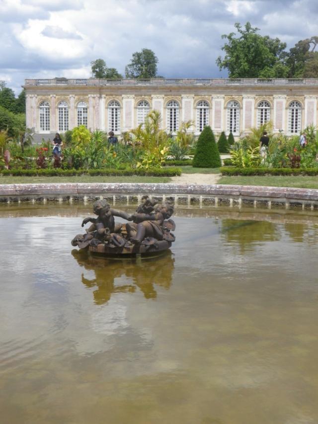 Le Parterre Africain du Grand Trianon Imgp1925