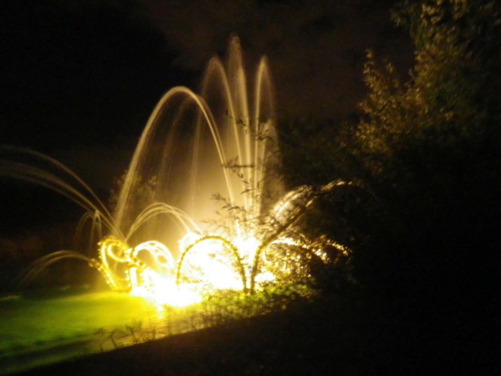Versailles, Les Grandes Eaux nocturnes Imgp2272