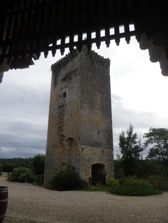 Le château de Roquetaillade Imgp2544