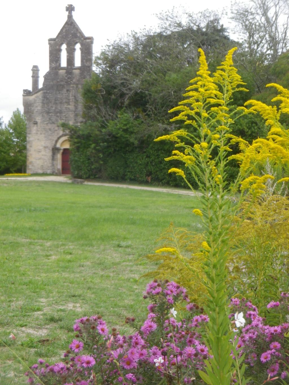 Le château de Roquetaillade Imgp2546