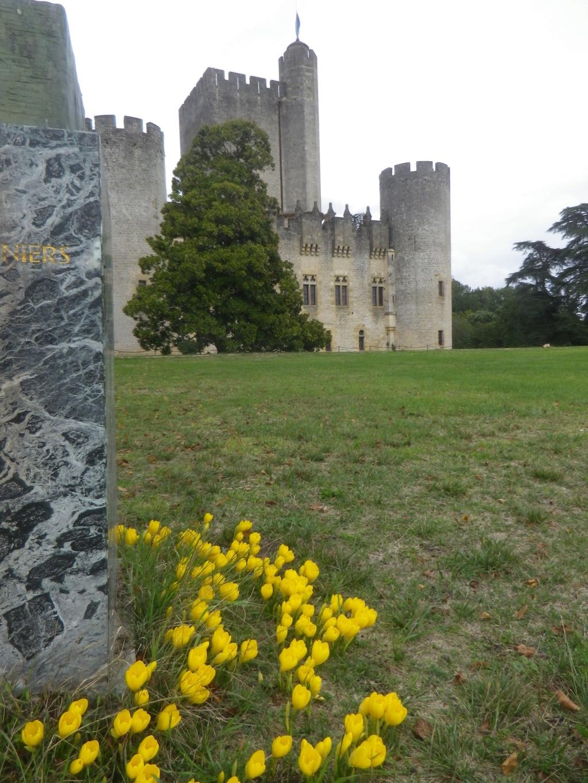 Le château de Roquetaillade Imgp2547