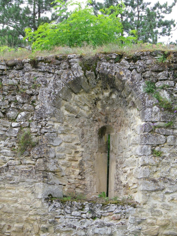 A 30 km au sud de Lyon,  le château de Septème Imgp2665