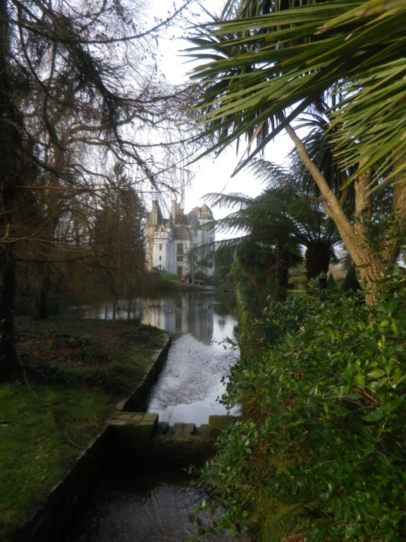 Le château des Ravalet,      et Tocqueville ... Imgp4342
