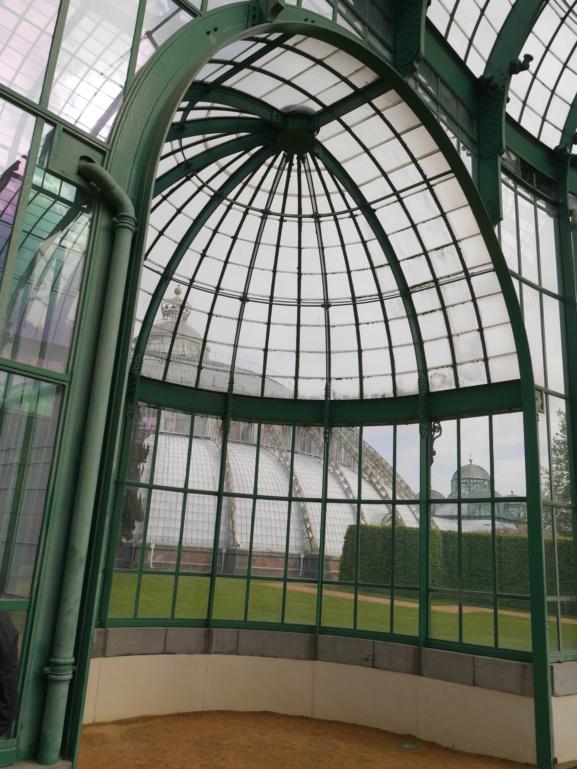 Belgique :  les Serres royales de Laeken P1080310