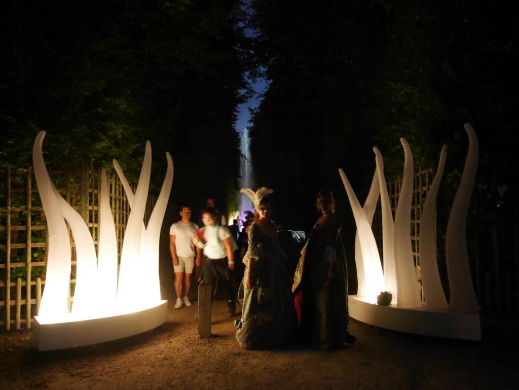 Versailles, Les Grandes Eaux nocturnes P1080436