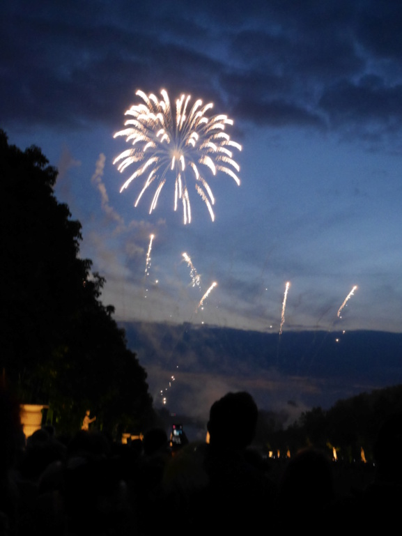 Versailles, Les Grandes Eaux nocturnes P1080457