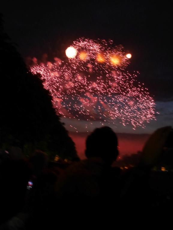 Versailles, Les Grandes Eaux nocturnes P1080462