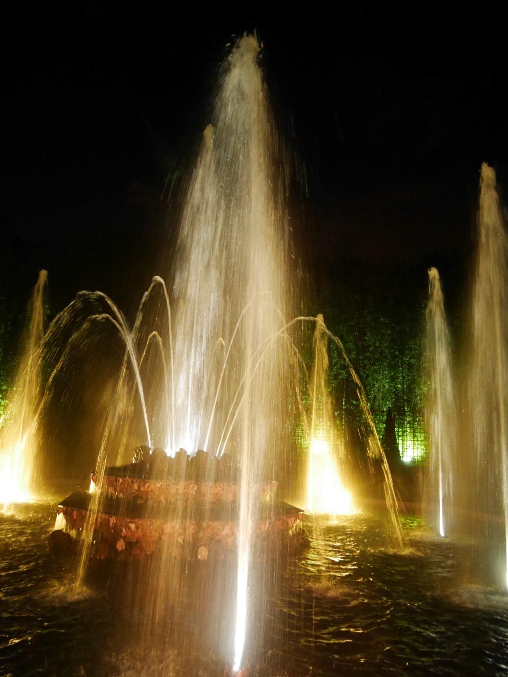 Versailles, Les Grandes Eaux nocturnes P1090429