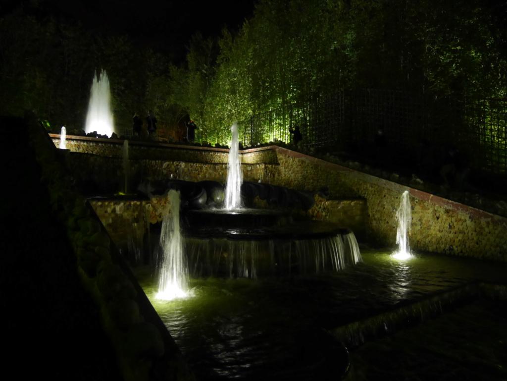 Versailles, Les Grandes Eaux nocturnes P1090431