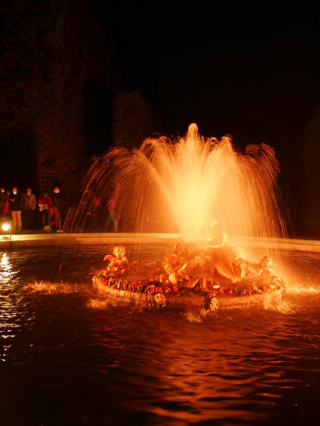 Versailles, Les Grandes Eaux nocturnes P1090436