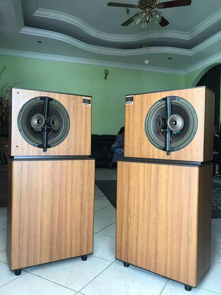 BOSE 8.2 Stereo everywhere floor-standing speakers B210