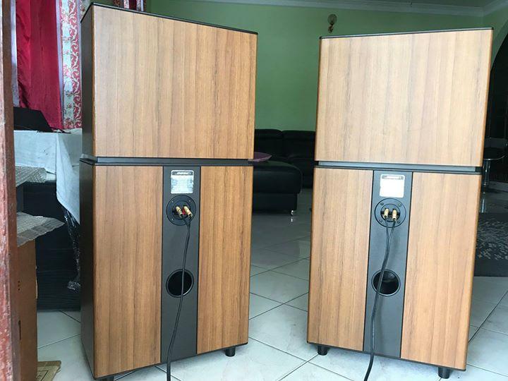 BOSE 8.2 Stereo everywhere floor-standing speakers B310
