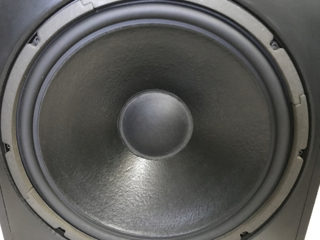 "Definitive Technology 15"" Powerfield Subwoofer (USA) Img_1310"