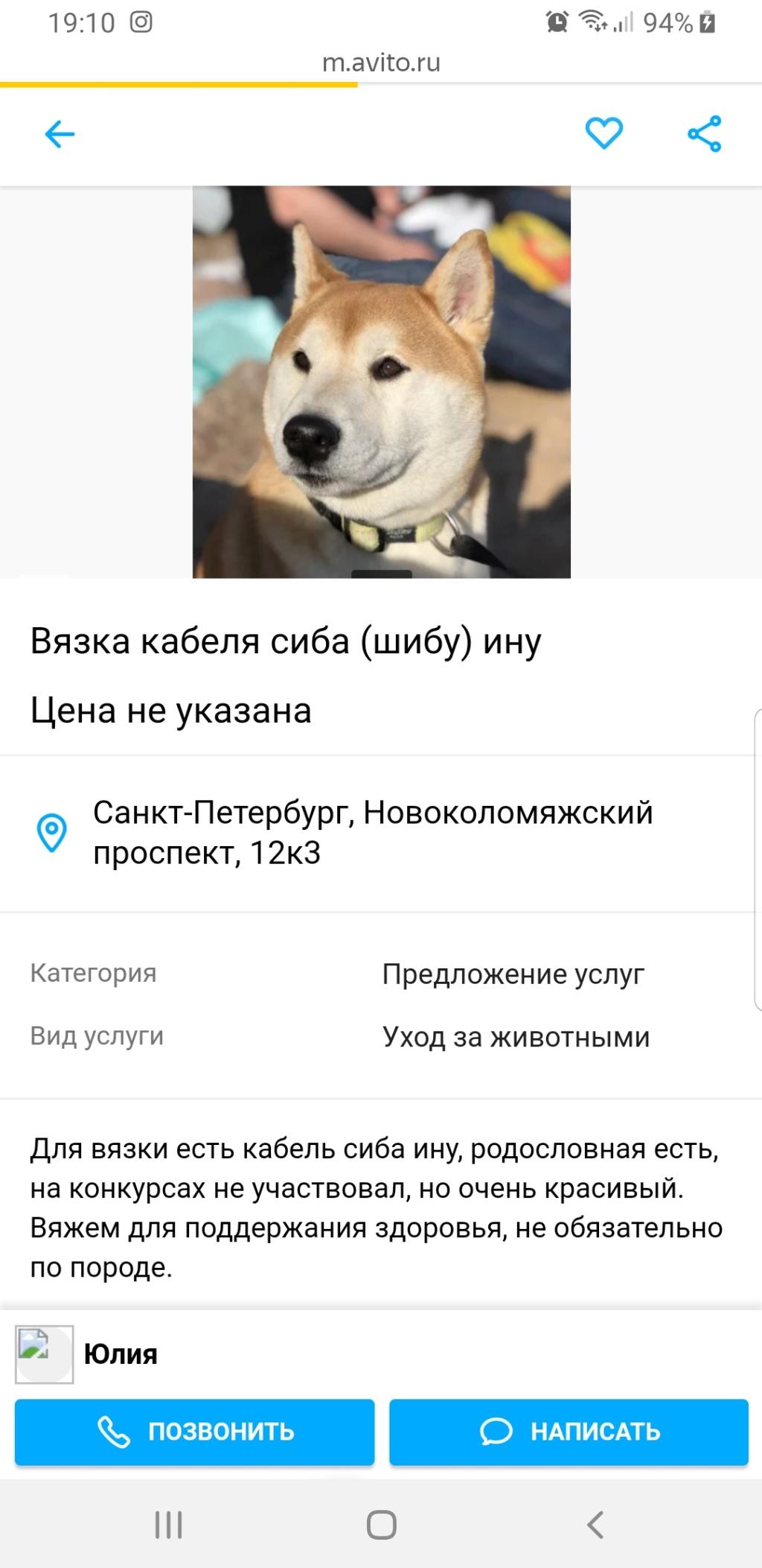 СТРАННЫЕ ОБЪЯВЛЕНИЯ С АВИТО - Страница 37 Screen11